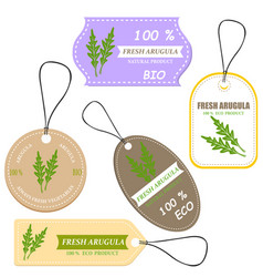 vegetable tag and farm market veggies price labels vector image