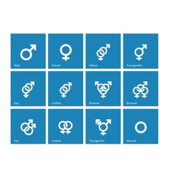 Sexual orientation icons on blue background vector image vector image