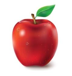 A juicy red vector