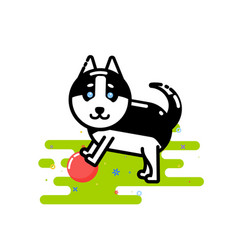 Cute husky play with red ball vector