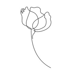 Flower drawing in one line drawing minimal art vector