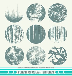 Forest circular textures vector image