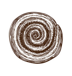 Hand drawn sweet bun or roll with cinnamon or vector