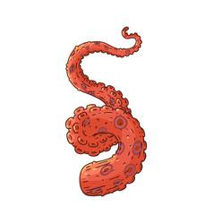 ocopus or squid tentacle sketch icon vector image