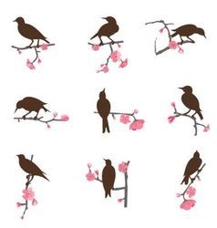set from birds vector image