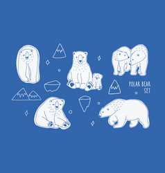 set with different white polar bears hand drawn vector image