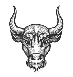 bull head engraving vector image vector image