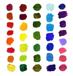 Colorful brush stain vector image vector image