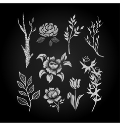 Fantasy Hand Drawn Flower and Plant Set vector image vector image