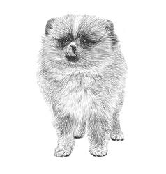 Dog 06 vector image
