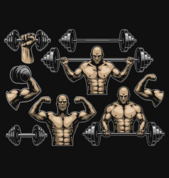 elements for bodybuilding vector image