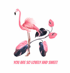 Exotic pink flamingo birds with leaves branch vector