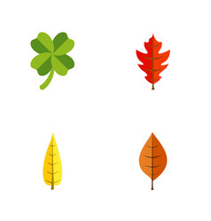 Flat icon maple set of foliage maple frond and vector