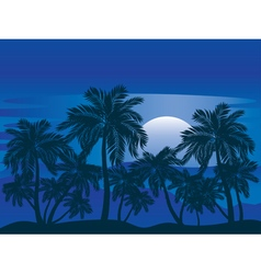 Palm Tree at Night3 vector image
