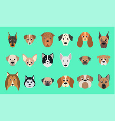 set dogs vector image