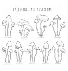 set hallucinogenic mushrooms vector image