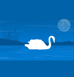 silhouette of swan on blue background landscape vector image