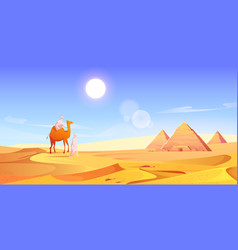 Two men and camel in egyptian desert with pyramids vector