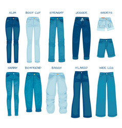 women jeans fits denim female pants models skinny vector image