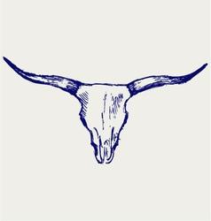 Head skull of bull vector image vector image