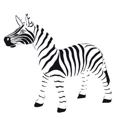 zebra in striped black and white vector image vector image