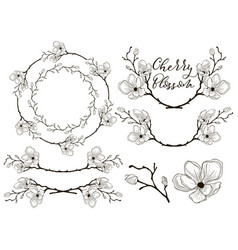 cherry blossom design dividers frames and vector image vector image