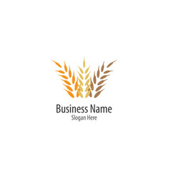 agriculture wheat logo template vector image