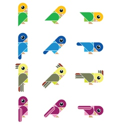 birdy isolated vector image vector image