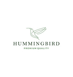 hummingbird colibri bird logo line outline vector image