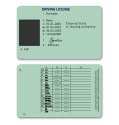 plastic driver licence vector image