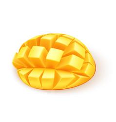 Realistic ripe cube sliced mango fruit vector