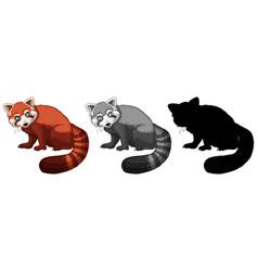 set of red panda character vector image