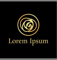 golden line rose curve logo design template vector image vector image
