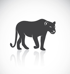 image of an female lion vector image vector image