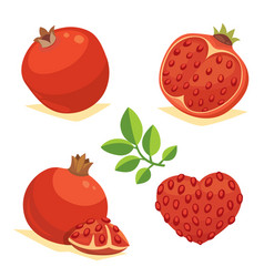whole and cut pomegranate icon set cartoon healty vector image vector image