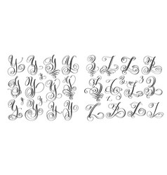 calligraphy letters set y and z script font vector image