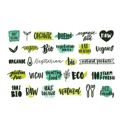 collection of organic labels with handwritten vector image