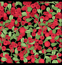 Lingonberry seamless pattern detailed hand drawn vector
