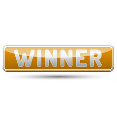 winner - glossy banner with shadow vector image