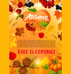 autumn harvest banner with fall leaf pumpkin vector image vector image