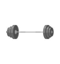 barbell isolated fitness object on white vector image