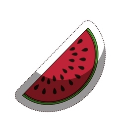 Delicious watermelon fruit isolated icon vector