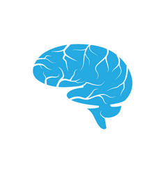 health brain vector image