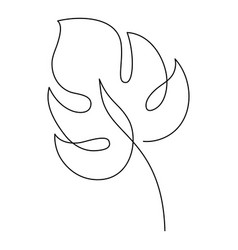 Monstera drawing one line drawing minimal art vector
