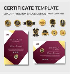 Professional certificate design with premium badge vector
