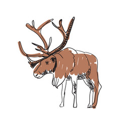 reindeer hand drawn isolated icon vector image