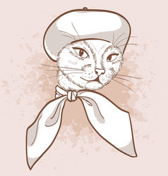 sketch elegant cat vector image