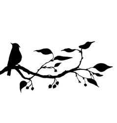 bird at tree silhouettes vector image vector image