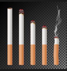 cigarette set realistic cigarette butt vector image vector image