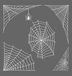 spider web silhouette arachnid fear graphic flat vector image vector image
